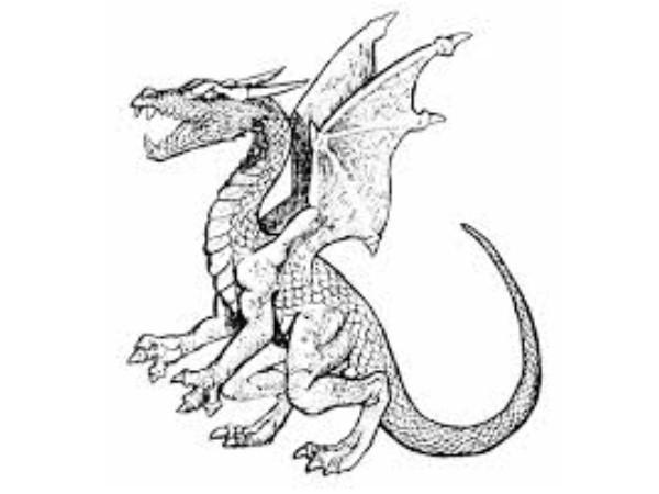 esquisse de dragon